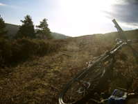 guided mountain biking day on the North York Moors